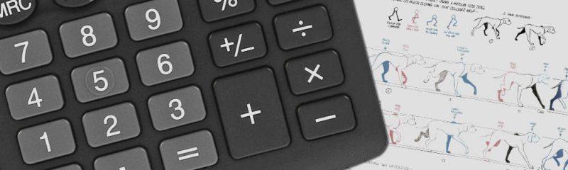 калькулятор стоимости анимации онлайн